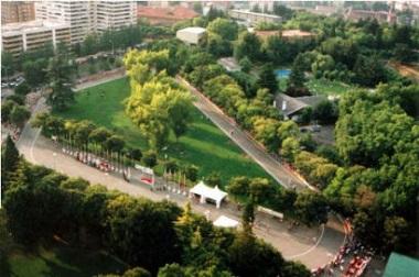Cto. España circuito para junior y senior